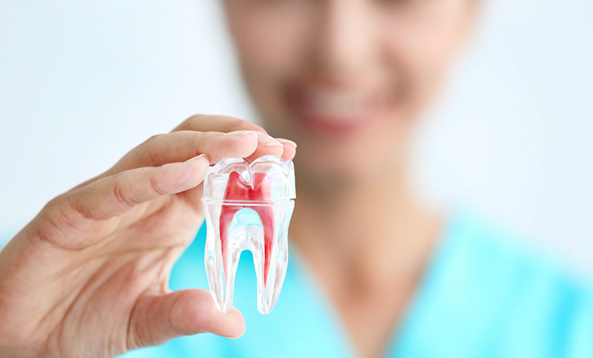 Pose de prothèse dentaire complète amovible dans Lanaudière - Denturologiste Sylvain Perreault à Joliette